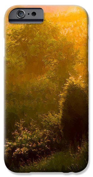Gloaming iPhone Cases - Early Gloaming iPhone Case by Ron Jones