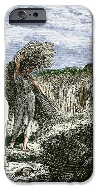 Early Humans Harvesting Crops iPhone Case by Sheila Terry