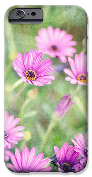Easter Basket iPhone Case by Joel Olives