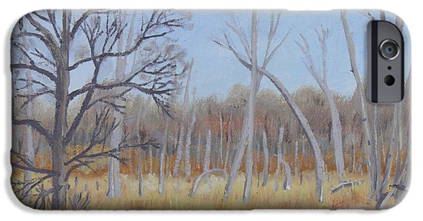 Nature Center Paintings iPhone Cases - Edge of the Marsh iPhone Case by Robert P Hedden