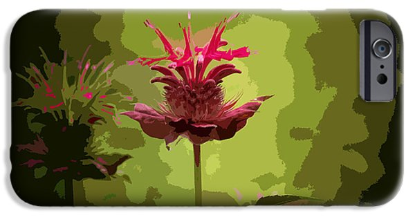 Abstract Digital Photographs iPhone Cases - Editing With One Eye Open iPhone Case by Trish Tritz