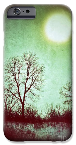 Wintertime iPhone Cases - Eerie Landscape iPhone Case by Jill Battaglia
