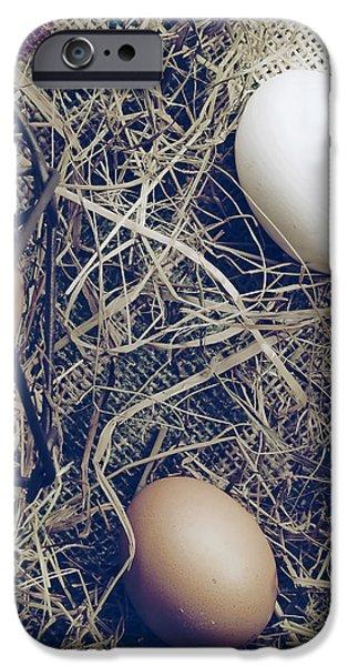 eggs iPhone Case by Joana Kruse
