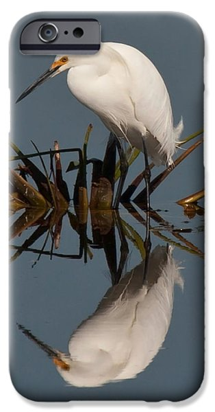 Snowy Pyrography iPhone Cases - Egret Reflection iPhone Case by Allen Dulaney