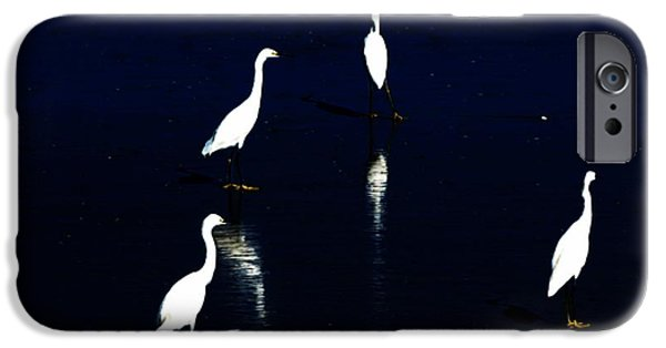 Sea Birds Digital Art iPhone Cases - Egret Reflections iPhone Case by David Lane