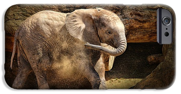Zoo Animal iPhone Cases - Elephant Calf iPhone Case by Larry Marshall