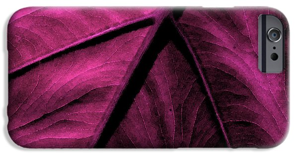 Flora Mixed Media iPhone Cases - Elephant Leaf Abstract iPhone Case by Bonnie Bruno