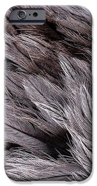 Emu Feathers iPhone Case by Hakon Soreide