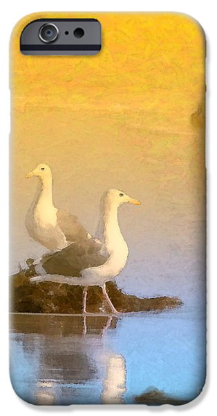 Seagull iPhone Cases - End of the Day iPhone Case by Betty LaRue