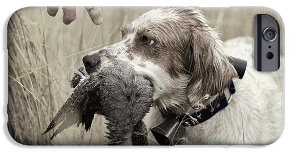Cooperation iPhone Cases - English Setter and Hungarian Partridge - D003092a iPhone Case by Daniel Dempster