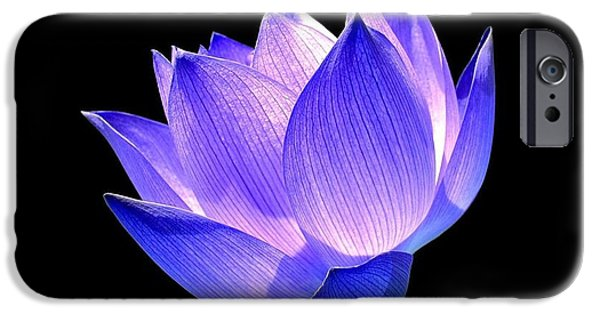 Blue Pyrography iPhone Cases - Enlightened iPhone Case by Photodream Art