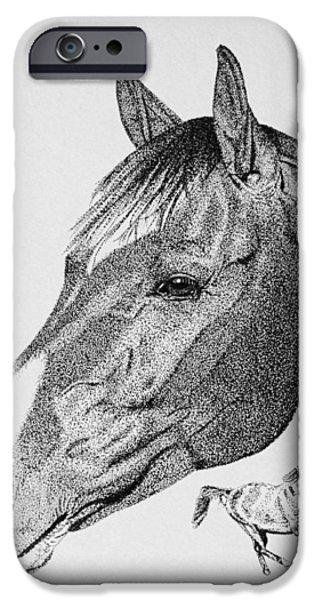 Equine Profile iPhone Case by Malc McHugh