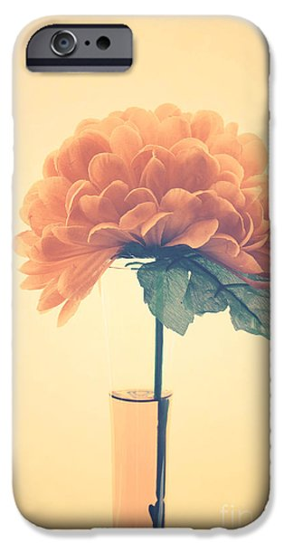 Estillo - 01i2 iPhone Case by Variance Collections