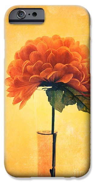 Flower Still Life iPhone Cases - Estillo - 01i2t03 iPhone Case by Variance Collections