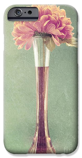 Estillo Vase - s01t04 iPhone Case by Variance Collections