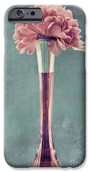 Estillo Vase - s01v4b2t03 iPhone Case by Variance Collections