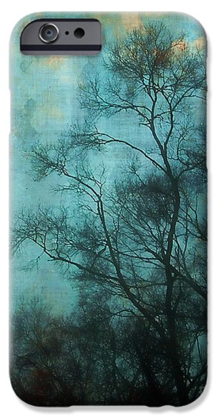 Evening Sky iPhone Case by Judi Bagwell