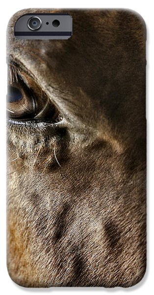 Eye Of The Horse iPhone Case by Susan Candelario