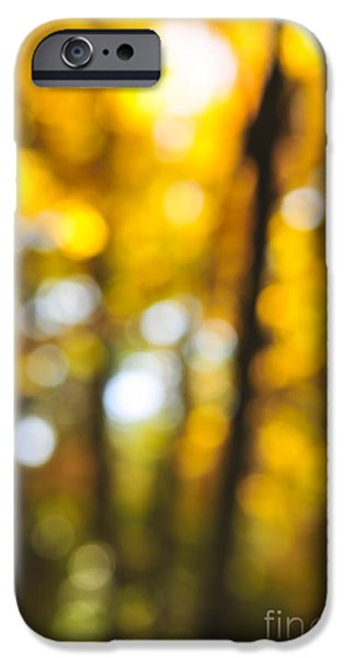 Nature Abstract iPhone Cases - Fall abstract iPhone Case by Elena Elisseeva