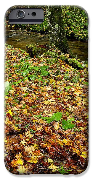Fall along Middle Fork iPhone Case by Thomas R Fletcher