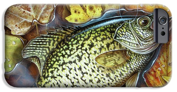 Angling iPhone Cases - Fall Crappie iPhone Case by JQ Licensing