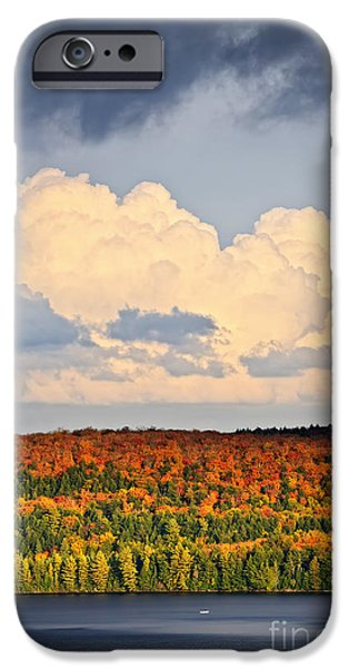 Autumn iPhone Cases - Fall forest and lake iPhone Case by Elena Elisseeva