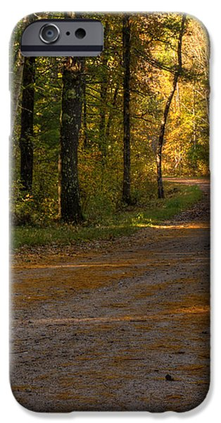 Fall is just around the corner iPhone Case by Thomas Young