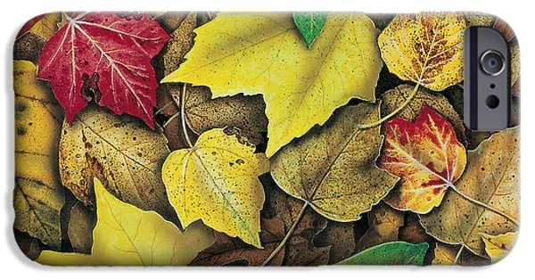 Jon Q Wright iPhone Cases - Fall Leaf Study iPhone Case by JQ Licensing