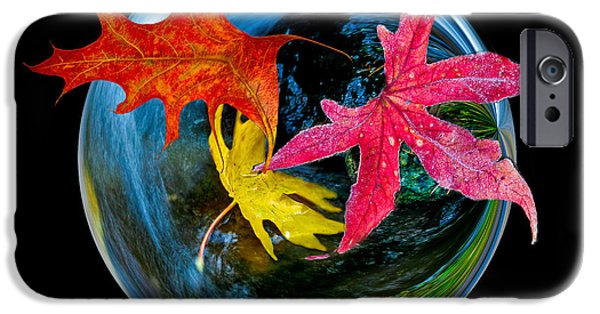 Jean Noren iPhone Cases - Fall takes over iPhone Case by Jean Noren
