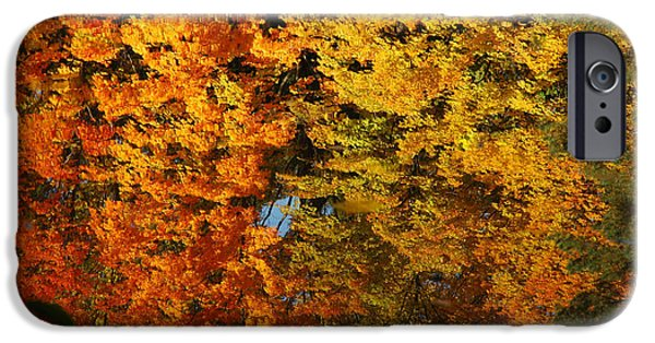 Nature Center Pond iPhone Cases - Fall Textures in Water iPhone Case by LeeAnn McLaneGoetz McLaneGoetzStudioLLCcom