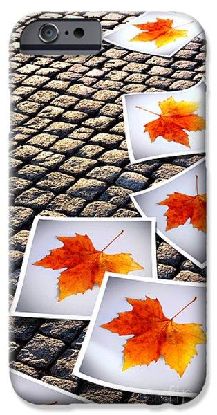Tree Art Print iPhone Cases - Fallen Autumn  prints iPhone Case by Carlos Caetano