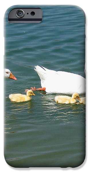 Family outing on the Lake iPhone Case by Ed Churchill
