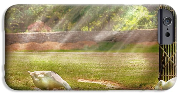 Mother Goose iPhone Cases - Farm - Geese -  Birds of a Feather - Panorama iPhone Case by Mike Savad
