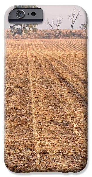 Crops iPhone Cases - Farm Field Fog iPhone Case by Steve Gadomski