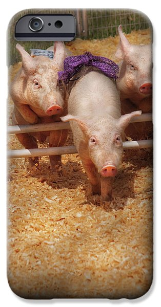 Farm - Pig - Getting past hurdles iPhone Case by Mike Savad