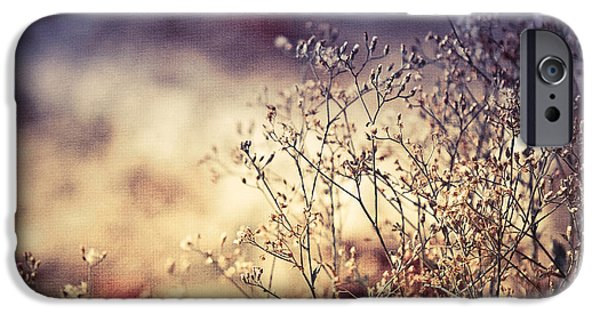 Beauty Glass Art iPhone Cases - Fascinating Life of Grass. Painting with Light iPhone Case by Jenny Rainbow