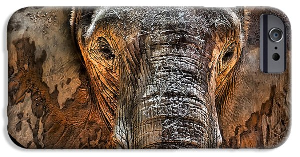 Elephants Photographs iPhone Cases - Fearless iPhone Case by Janet Fikar