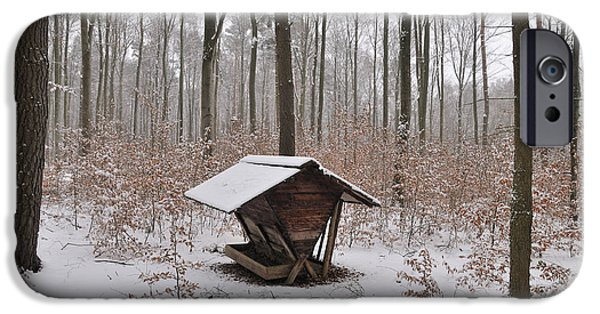 Snowy Day iPhone Cases - Feed box in winterly forest iPhone Case by Matthias Hauser
