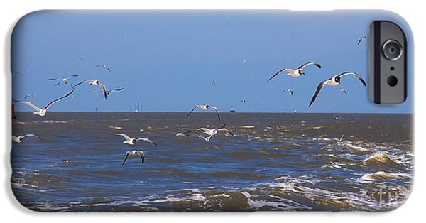 Flying Seagull iPhone Cases - Feed us - Ferry to Galveston TX iPhone Case by Susanne Van Hulst