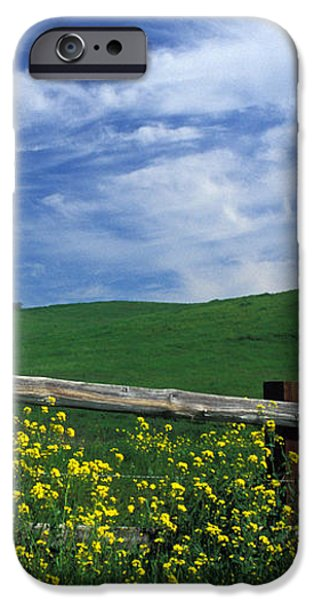 Fence and Flowers iPhone Case by Kathy Yates