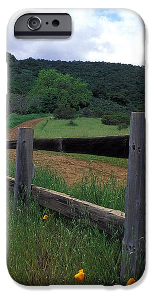 Fence and Poppies iPhone Case by Kathy Yates
