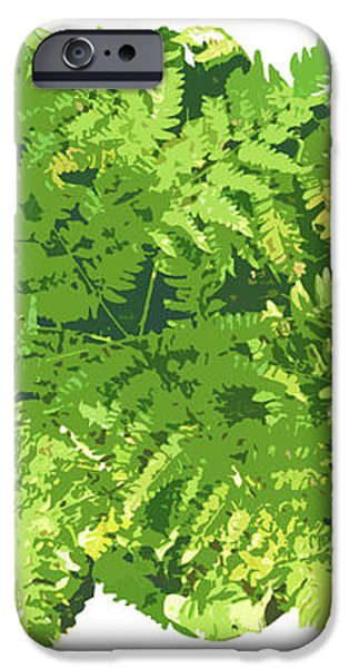 Fern Vignette iPhone Case by JQ Licensing