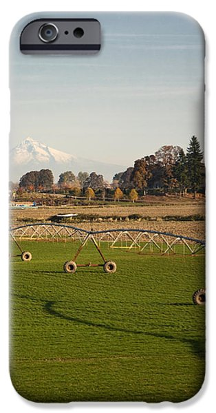 Field With Irrigation Pipes iPhone Case by David Buffington