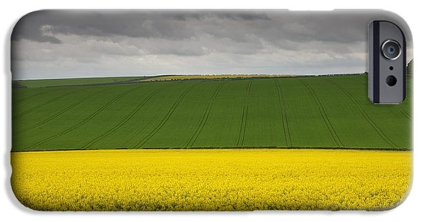 Canola Field iPhone Cases - Fields North Yorkshire, England iPhone Case by John Short