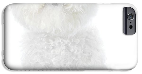 Happy Posters iPhone Cases - Fifi the Bichon Frise in White On White iPhone Case by Michael Ledray