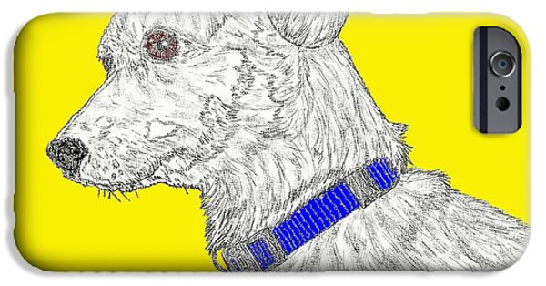 Puppy Digital Art iPhone Cases - Finn in color iPhone Case by Salvadore Delvisco