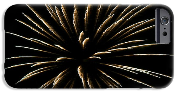 Fireworks iPhone Cases - Fireworks Fun 4 iPhone Case by Marilyn Hunt