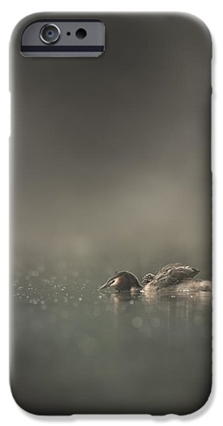 Canvassing iPhone Cases - First Morning iPhone Case by Andy Astbury