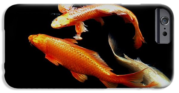 Butterfly Koi Photographs iPhone Cases - Fish Swimming iPhone Case by Don Mann