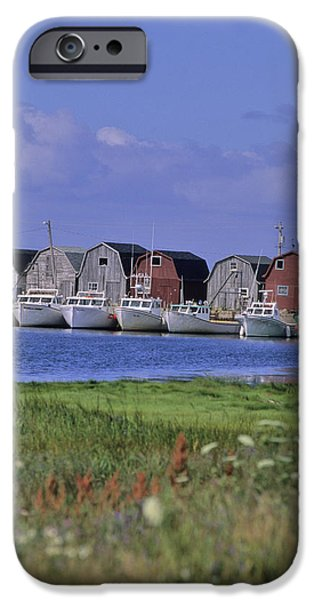 Fishing Shacks Line The Bay At Malpeque iPhone Case by Leanna Rathkelly